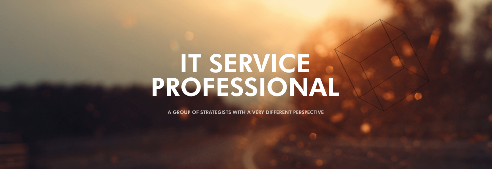 IT service professional a group of strategists with a very different perspective
