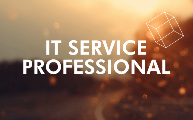 IT service professional