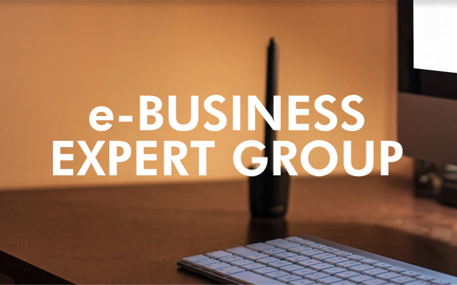 e-BUSINESS EXPERT GROUP